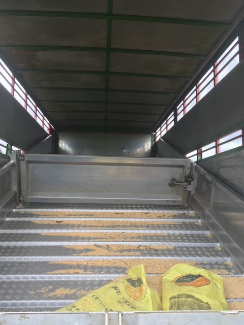 ramp view